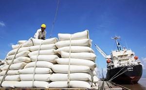 Trúng thầu cung cấp 30 nghìn tấn gạo trắng cho Philippines