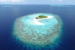 Các đảo san hô nhỏ có khả năng tự thích ứng với nước biển dâng