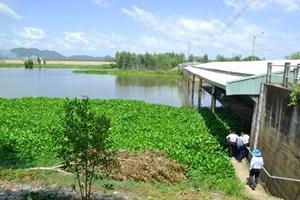 Đồng bằng sông Cửu Long: Ứng phó với ngập lũ nội đồng