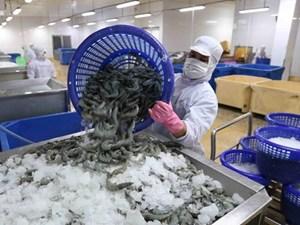 Hoa Kỳ không áp thuế chống bán phá giá tôm xuất khẩu là công bằng