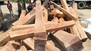 Dựng nhà, một người đàn ông bị cây gỗ đè tử vong