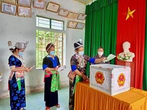 Hơn 42 ngàn cử tri đi bầu cử sớm tại Nghệ An