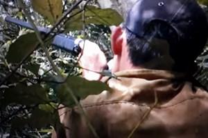 Một thầy giáo thiệt mạng trong lúc đi săn thú