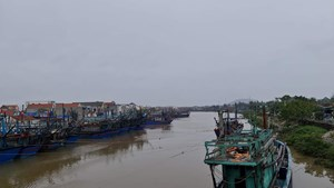 Nghệ An: Gần 3,5 nghìn tàu thuyền vào tránh trú bão số 7