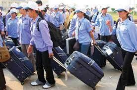 Nhu cầu tuyển điều dưỡng đi làm ở Nhật Bản tăng cao