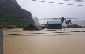 Quảng Bình: 3 người chết, 72 ngàn ngôi nhà chìm trong lũ