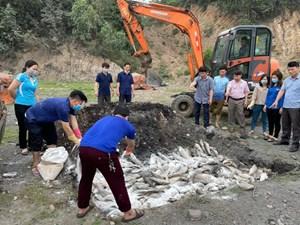 Hàng chục tấn cá lồng bè và cá tự nhiên tại Quảng Xương và Nghi Sơn chết bất thường