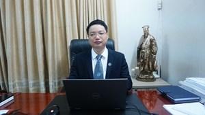 Hình phạt nào cho người tổ chức nhập cảnh trái phép vào Việt Nam?