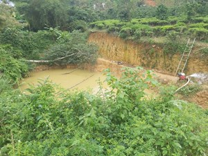 Lâm Đồng: Ba học sinh tiểu học đuối nước thương tâm