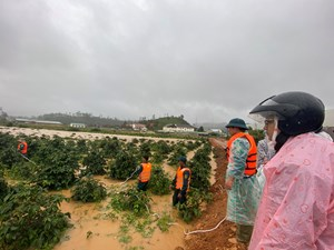Tìm thấy thi thể một nữ du khách bị nước lũ cuốn trôi ở Lâm Đồng