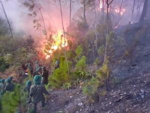 Hà Tĩnh: Sau khi thiêu rụi 30 ha, ngọn lửa bùng phát trở lại