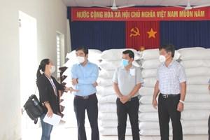Khánh Hòa: Phân bổ hơn 361 tấn gạo cho TP Nha Trang