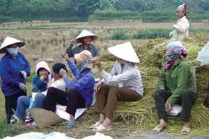Nam Định: 'Phụ nữ nông thôn di cư ra đô thị tìm việc làm không giảm'