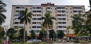 Hy hữu ở Thái Bình: Rơi xuống từ tầng 8, bé trai thoát chết