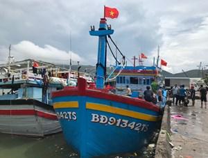 Bình Định hỗ trợ chi phí đợt 5 cho tàu đánh bắt xa bờ