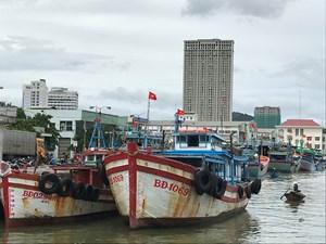 Ứng phó bão số 9: Bình Định cấm biển, khẩn trương sơ tán dân khỏi khu vực nguy hiểm