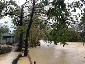 Bão số 12 đổ bộ Phú Yên, Khánh Hòa gây gió mạnh và mưa lớn trên diện rộng