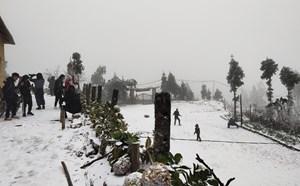 [VIDEO CLIP]: Toàn cảnh Sapa chìm trong tuyết trắng