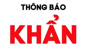 Hà Nội: Đề nghị người dân có các triệu chứng như sốt, ho,... liên hệ y tế