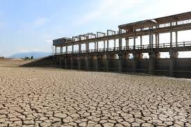 Bình Thuận: Hạn chế thiệt hại trong mùa khô