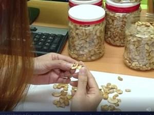 Bình Phước: Bắt giữ hơn 13 tấn hạt điều thải loại bán ra thị trường Tết