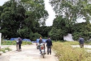 Giá đất ngoại thành gần Tết vẫn nóng