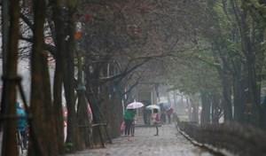 Ba miền có mưa, trời rét về đêm và sáng sớm