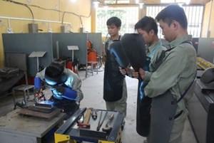 Nhiều đổi mới tại Kỳ thi Kỹ năng nghề quốc gia
