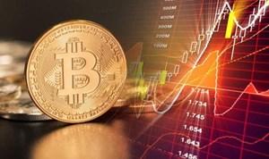 Bộ Tài chính thành lập Tổ nghiên cứu quản lý tài sản ảo, tiền ảo