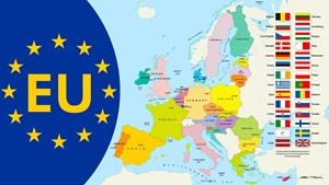 Pháp hối thúc EU có kế hoạch phục hồi sau dịch Covid-19