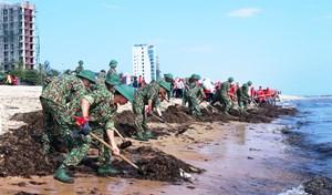 Quân đội với nhiệm vụ bảo vệ môi trường