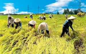 Bà đỡ cho nông nghiệp