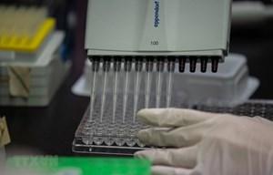 Hàn Quốc thông báo 5 ca tử vong sau khi tiêm vaccine phòng cúm