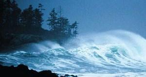 Bão số 8 suy yếu, bão số 9 giật cấp 14 tiến gần Biển Đông
