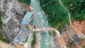 Thủy điện làm mất rừng khiến lũ nặng nề hơn