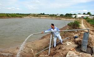 30 triệu người dân nông thôn sử dụng nước chưa đạt chuẩn