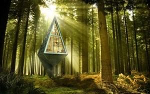 Những ngôi nhà trên cây tuyệt vời nhất thế giới