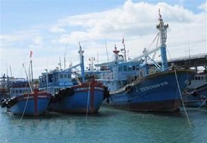 Đảm bảo an toàn cho ngư dân, tàu thuyền: Bắn pháo hiệu cảnh báo sớm