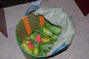 TP Hồ Chí Minh: Kiểm tra giỏ xoài, phát hiện cất giấu hơn 20 kg ma túy