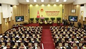 Cử tri Hà Nội đề nghị xử lý nghiêm vụ Pate Minh Chay