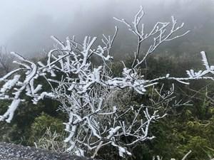 [ẢNH] Sáng nay băng tuyết phủ trắng đỉnh Mẫu Sơn