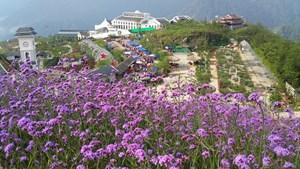 Du lịch Việt đón cơ hội bứt phá