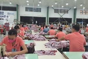 Đào tạo nghề miễn phí cho lao động bị mất việc bởi dịch Covid-19