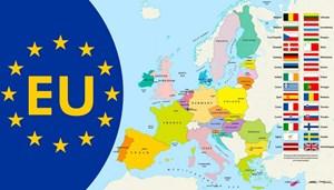 EU tổ chức hội nghị thượng đỉnh trực tuyến vể Covid-19