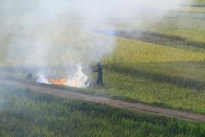 Đốt rơm rạ không chỉ gây ô nhiễm môi trường