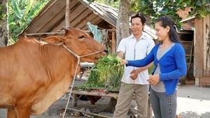 Tây Ninh: Phấn đấu đến năm 2025 duy trì tỷ lệ hộ nghèo còn dưới 1%