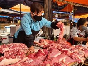 Giá thịt lợn vẫn cao