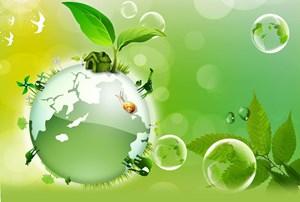 Nhiều lỗ hổng trong quản lý môi trường