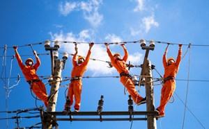 Bình Định: Hơn 600 hộ dân ở đảo Nhơn Châu được phủ lưới điện quốc gia