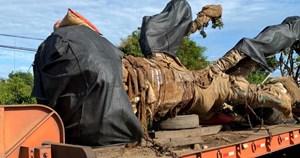 Cây khủng vượt hơn 300 km, đến Đắk Nông mới bị phát hiện